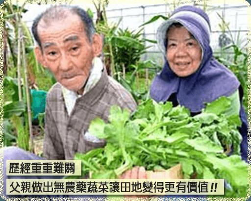 歷經重重難關父親做出無農藥蔬菜讓田地變得更有價值!!