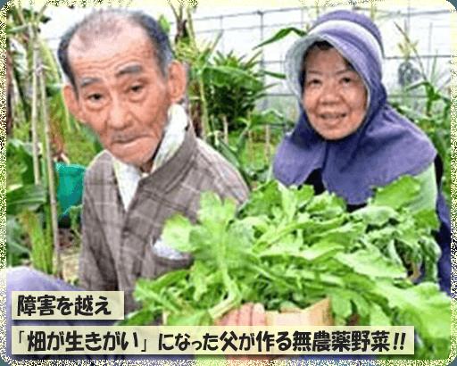 障害を越え「畑が生きがい」になった父が作る無農薬野菜!!